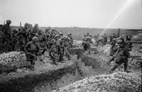 Battle of Cambrai. 4th Battalion Gordons (51st Div